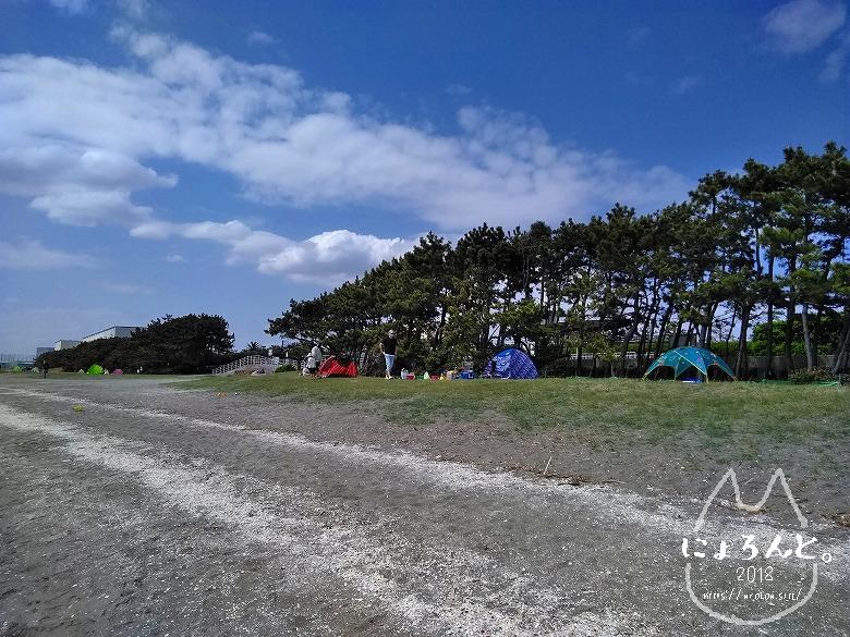 船橋三番瀬でビーチコーミング/テント群
