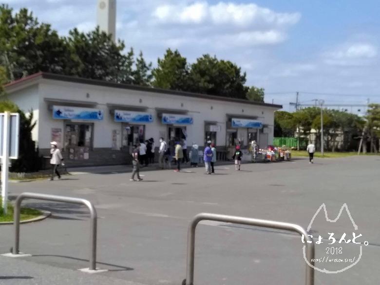 船橋三番瀬でビーチコーミング/売店