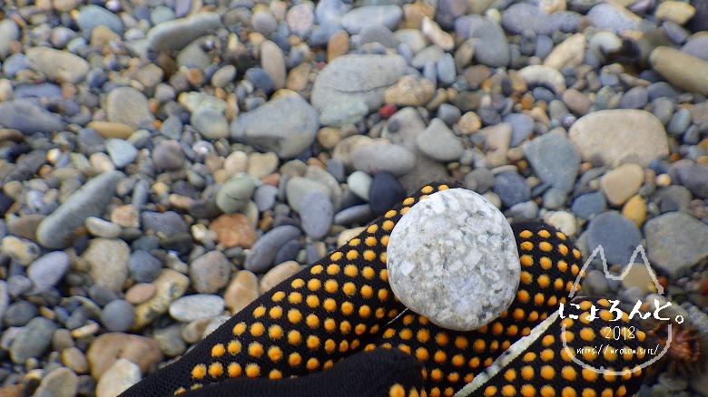 大洗海岸・磯浜灯柱前でビーチコーミング/石