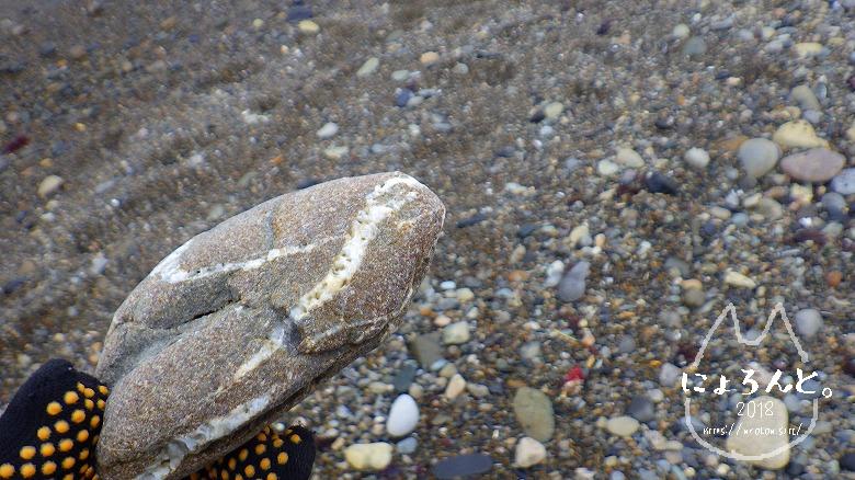 大洗海岸・磯浜灯柱前でビーチコーミング/石英脈