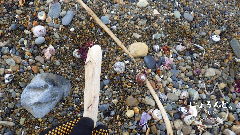 大洗海岸・磯浜灯柱前でビーチコーミング/木片