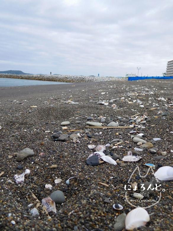 北条海岸でビーチコーミング/浜の様子