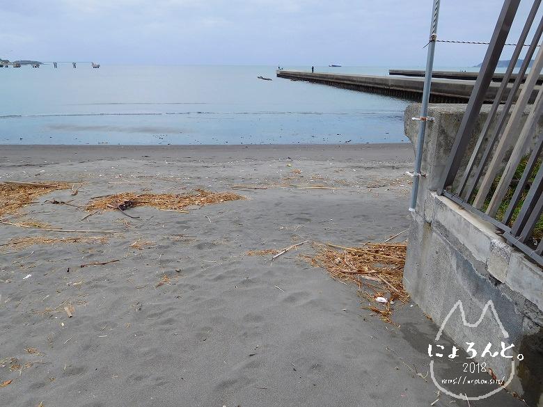 新井海岸でビーチコーミング/浜の様子