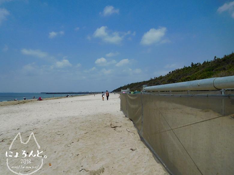 稲毛浜でビーチコーミング/浜の様子