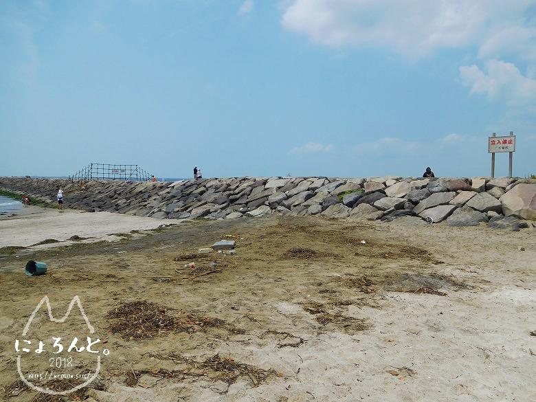 稲毛浜でビーチコーミング/堤防