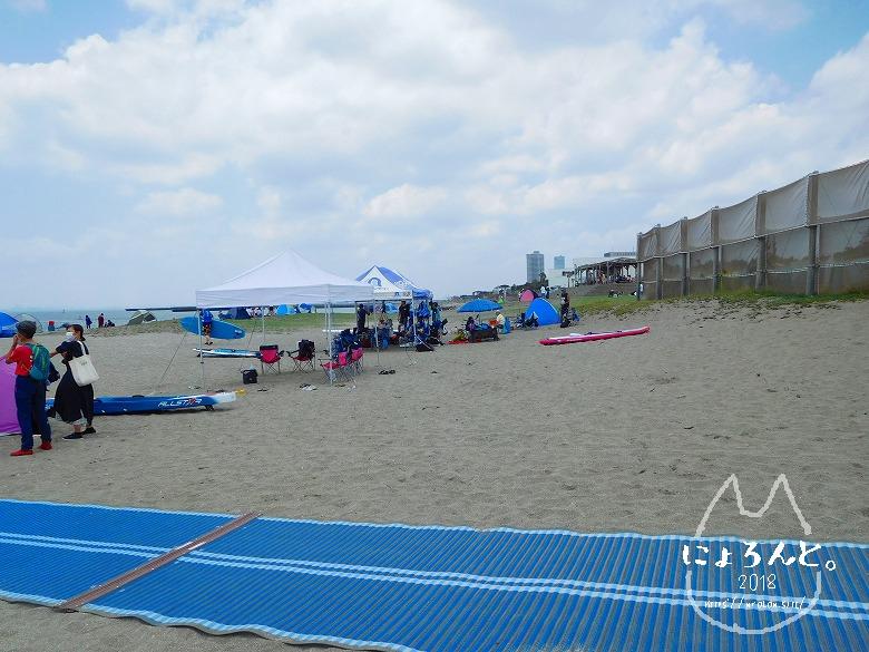 検見川浜でビーチコーミング/浜の様子