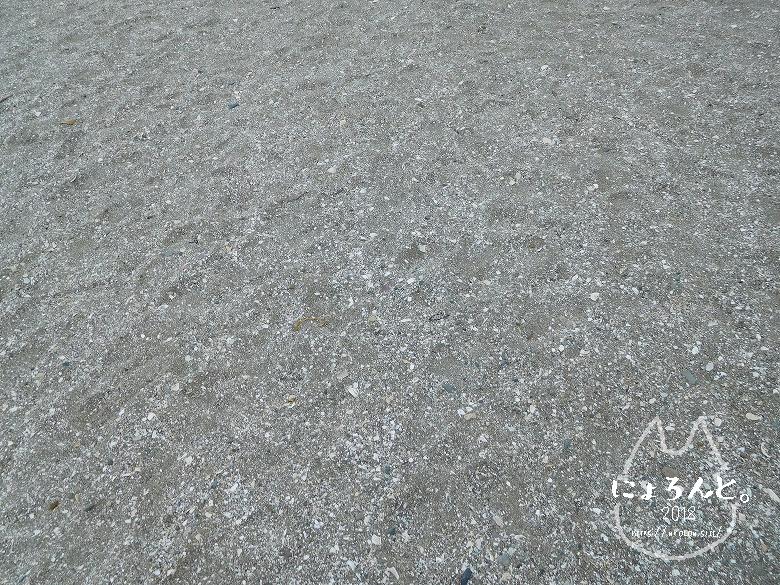 検見川浜でビーチコーミング/砂のアップ