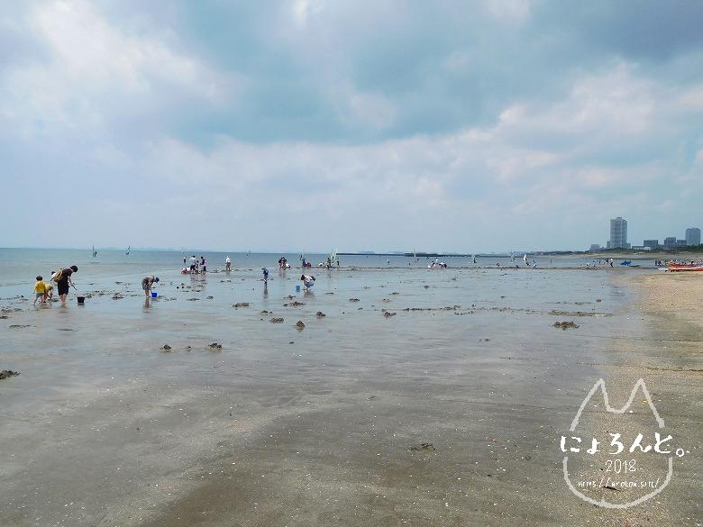 検見川浜でビーチコーミング/遠浅の浜