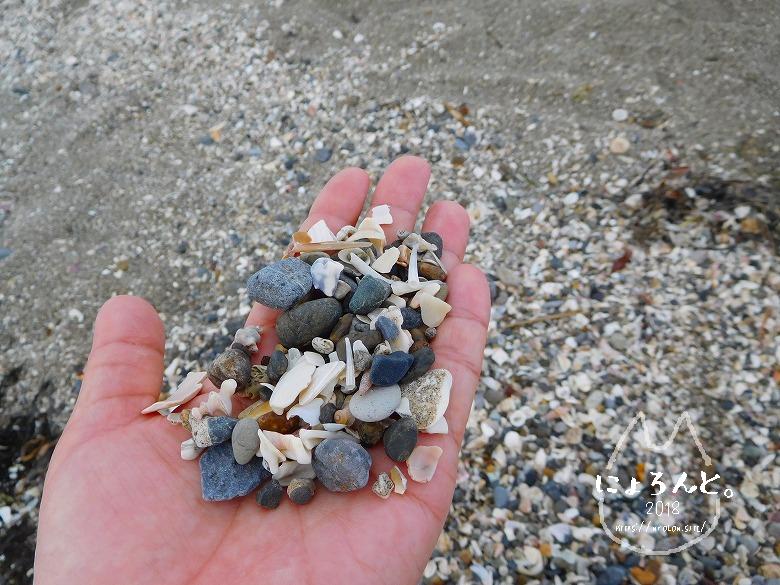検見川浜でビーチコーミング/無作為に拾った砂