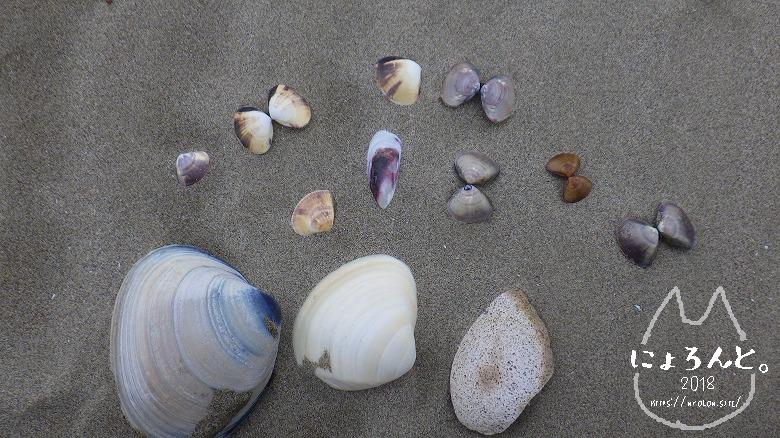 大洗海岸・サンビーチでビーチコーミング/拾ったもの