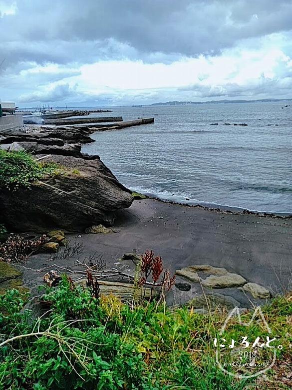 富津・竹岡萩生港北でビーチコーミング/浜の様子