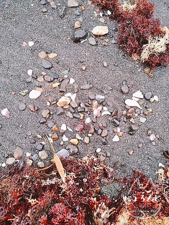 富津・竹岡萩生港北でビーチコーミング/浜のアップ