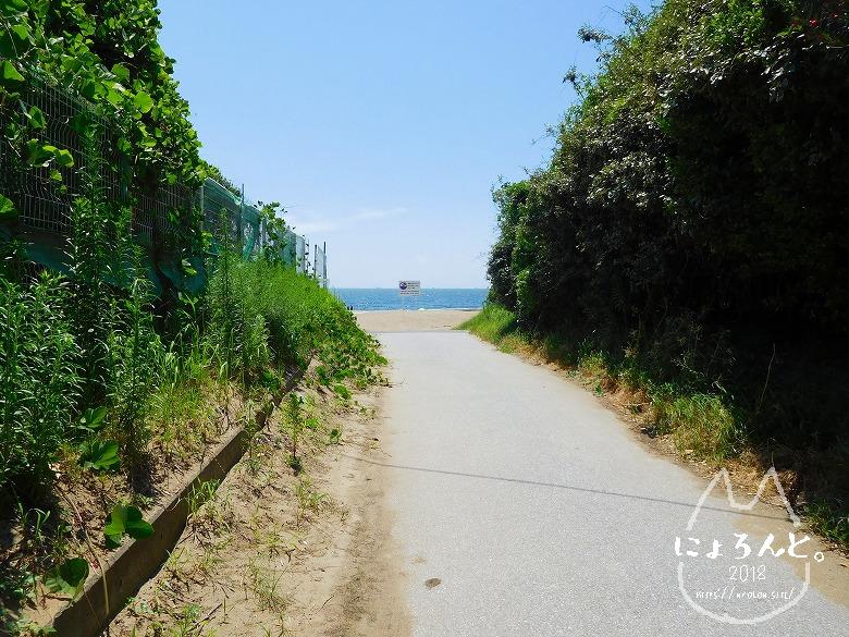 幕張の浜でビーチコーミング/順路