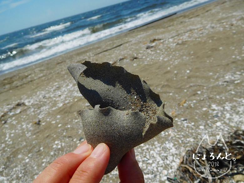 幕張の浜でビーチコーミング/砂茶碗