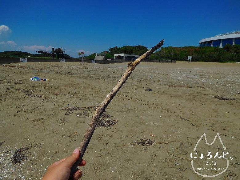 幕張の浜でビーチコーミング/オトモ棒