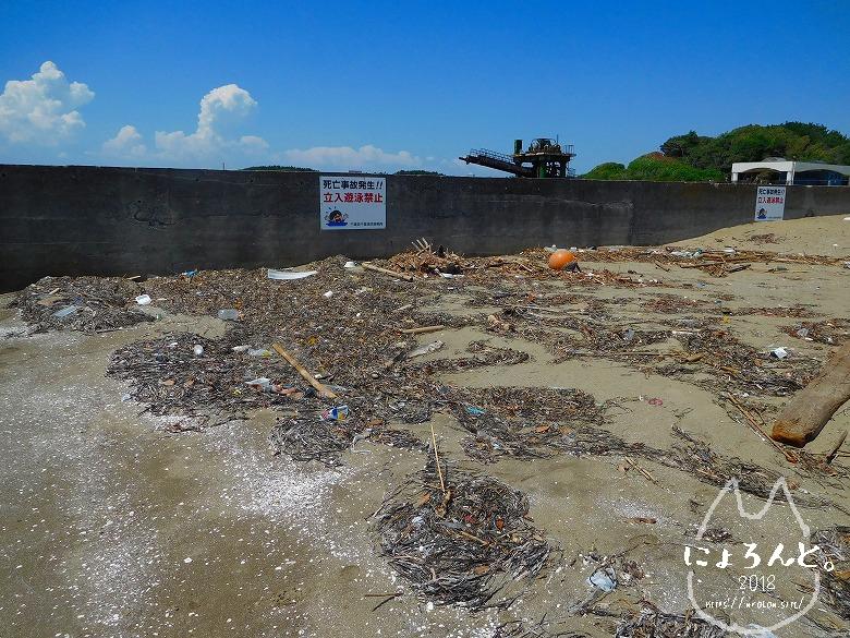幕張の浜でビーチコーミング/防波堤