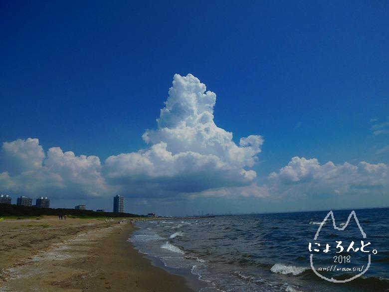 幕張の浜でビーチコーミング/入道雲