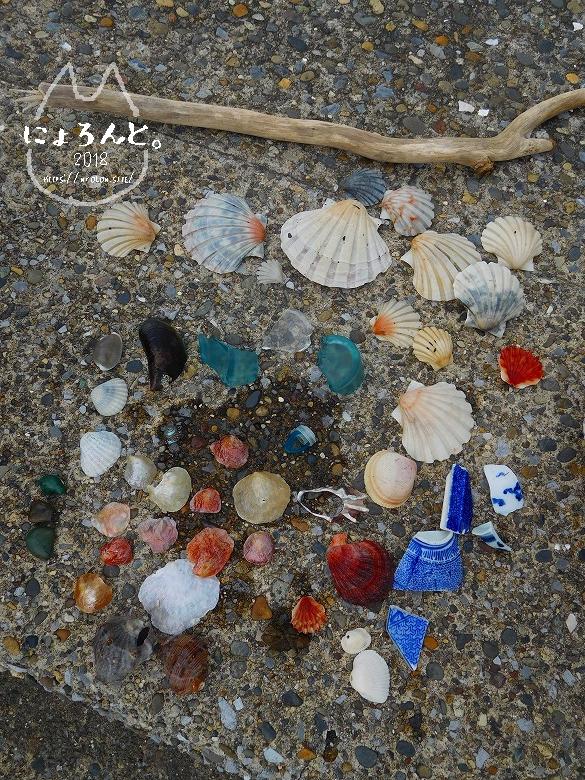 上総湊海浜公園でビーチコーミング/選別タイム