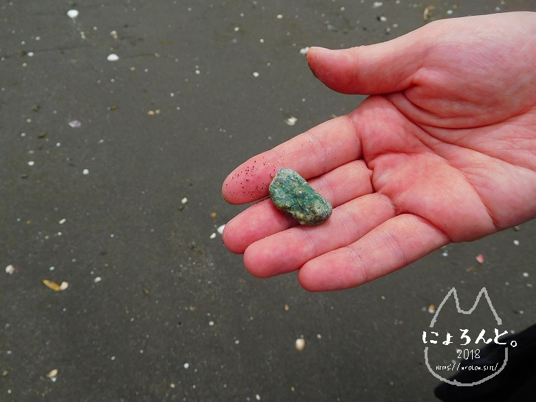 貝殻にシーグラスに陶片!上総湊・湊川河口でリバーコーミング/緑の石