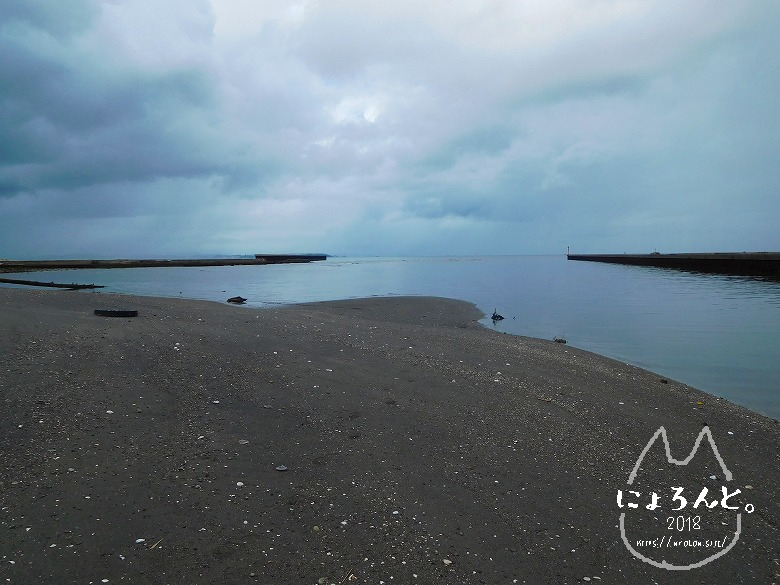 貝殻にシーグラスに陶片!上総湊・湊川河口でリバーコーミング/河口