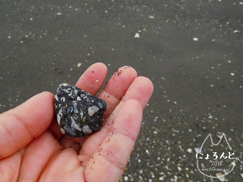 貝殻にシーグラスに陶片!上総湊・湊川河口でリバーコーミング/石