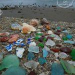 貝殻にシーグラスに陶片!上総湊・湊川河口でリバーコーミング/選別タイム