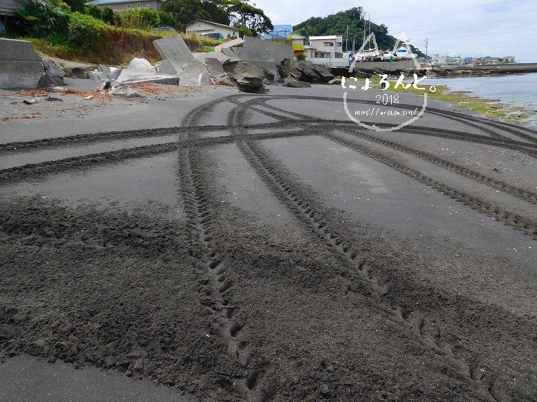 富津・竹岡萩生港北でビーチコーミング/車輪跡