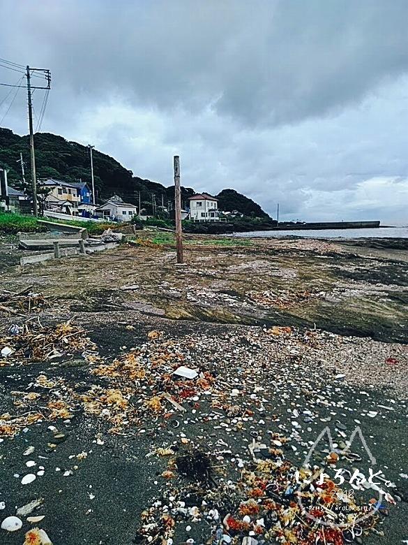 富津・竹岡萩生港南でビーチコーミング/浜の様子