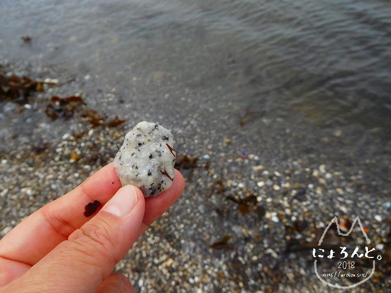 富津・竹岡(萩生/薬師堂近く)でビーチコーミング/ごま塩石