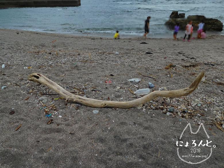 浜金谷海浜公園でビーチコーミング/浜の様子