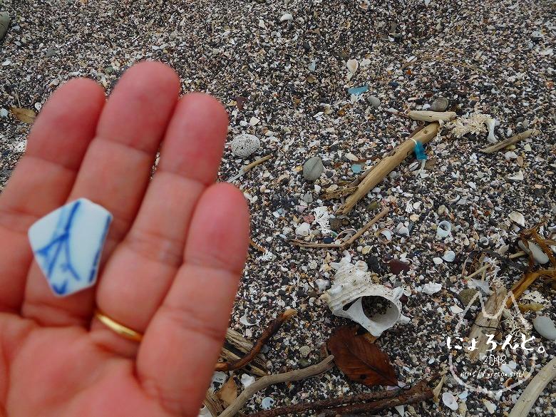 浜金谷海浜公園でビーチコーミング/陶片