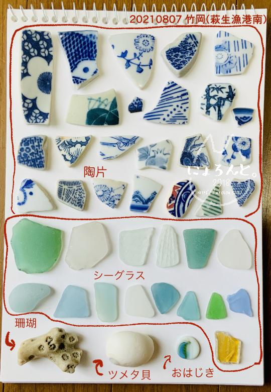 富津・竹岡萩生港南でビーチコーミング/図鑑