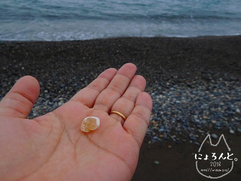 ヒスイ海岸(糸魚川海岸)でビーチコーミング/ぎょくすい