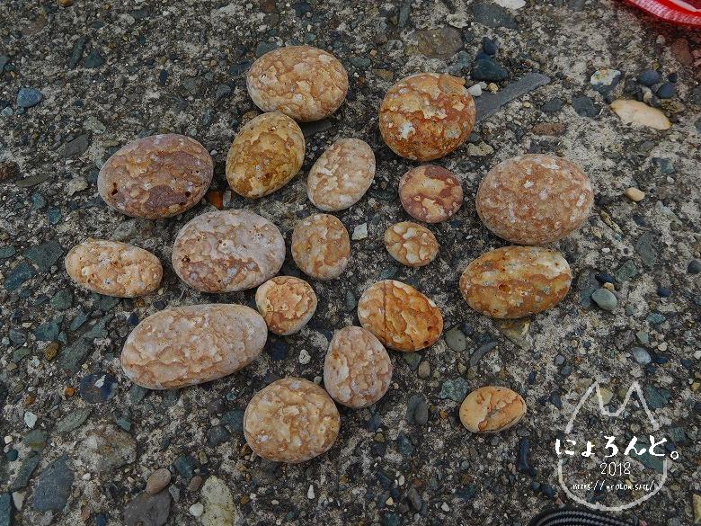 ヒスイ海岸(糸魚川海岸)でビーチコーミング/薬石